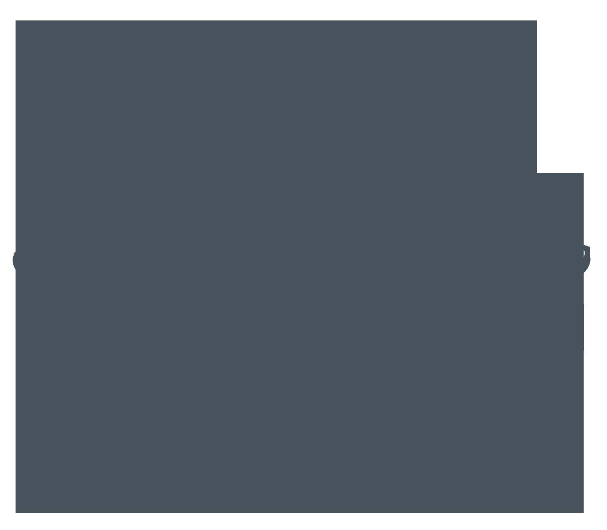 Detroitpistons gray